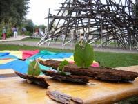 Kleine Boote aus Baumrinde mit Segeln aus Blättern vor der Kulisse der Landesgartenschau.