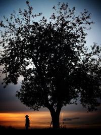 Tag der Umwelt, Foto Andreas Kinter
