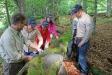 """Ranger Mario Schmid (l.) erläuterte den Gästen aus El Salvador anhand einer jungen Fichte auf einem abgestorbenen Baumstumpf den Gedanken """"Natur Natur sein lassen"""" (Foto: Annette Nigl / Nationalparkverwaltung Bayerischer Wald)"""