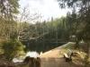 """Die idyllisch gelegene Martinsklause ist am Freitag, 22. Juni, Ziel der Wanderung aus der Reihe """"Nationalpark und Schöpfung"""". (Foto: Sandra Schrönghammer/Nationalpark Bayerischer Wald)"""