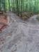 Durch das Unwetter der vergangenen Nacht wurden Wege im Tier-Freigelände des Nationalparkzentrums Lusens ausgeschwemmt und sind derzeit schwieriger zu begehen (Foto: Andreas Hackl / Nationalparkverwaltung Bayerischer Wald).