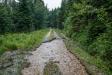 Auf einer Länge von 200 Metern wurde der Forstweg, der vom Wistlberg ins Reschbachtal hinunterführt, abgeschwemmt (Foto: Rainer Simonis / Nationalparkverwaltung Bayerischer Wald).