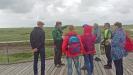 Neben dem Dialog mit Lehrerkollegen standen für die Bayerwald-Delegation auch Führungen mit Wattenmeer-Rangern auf dem Programm. (Foto: Thomas Michler/Nationalpark Bayerischer Wald)