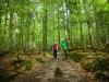 Bei den Wanderungen mit Religionspädagogin Susanne Keilhofer gibt's besondere Einblicke in den Nationalparkwald. (Foto: Daniela Blöchinger/Nationalpark Bayerischer Wald)