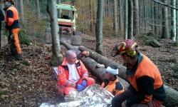 """Bis zum Eintreffen von Rettungsdienst und Bergwacht versorgten Kollegen den """"verletzten"""" Waldarbeiter. (Foto: Reinhold Weinberger/Nationalpark Bayerischer Wald)"""