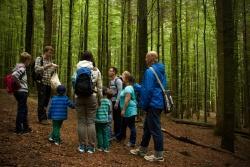 Im Nationalpark Bayerischer Wald werden Commerzbank-Umweltpraktikanten hauptsächlich in der Umweltbildung, wie hier im Waldspielgelände bei Spiegelau, eingesetzt. (Foto: Irene Gianordoli/Nationalpark Bayerischer Wald)