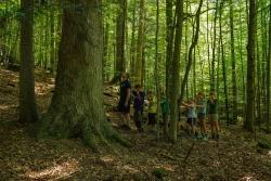 Dutzende ehrenamtliche Waldführer haben sich in den beiden Pro-Nationalpark-Vereinen organisiert. Zum Repertoire gehören auch Führungen mit Kindern und Jugendlichen. (Foto: Thomas Michler/Nationalpark Bayerischer Wald)