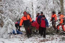 """Teamarbeit war nicht nur beim Abtransport des """"Verletzten"""" gefragt: Nationalpark-Mitarbeiter, Sanitäter und Bergretter arbeiteten Hand in Hand. (Foto: Reinhold Weinberger/Nationalpark Bayerischer Wald)"""