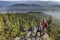 Tolle Ausblicke auf entstehende Waldwildnis bieten die Gipfel im Nationalpark Bayerischer Wald, wie etwa der Große Falkenstein. (Foto: Frank Bietau/Nationalpark Bayerischer Wald)