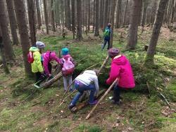 Spaß in der Natur haben und viel Neues entdecken, das verspricht das Kinderferienprogramm der Nationalparkzentren Falkenstein und Lusen. (Foto: Paula Moosbauer/Nationalpark Bayerischer Wald)