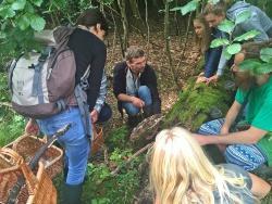 Jacob Heilmann-Clausen (Mitte) ist der wohl aktivste Waldnaturschützer in Dänemark. Vor allem Pilze in Buchenurwäldern kennt er wie seine Westentasche. (Foto: Universität Kopenhagen)