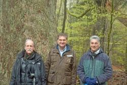 Zwei der renommiertesten Teilnehmer der Tagung waren Reed Noss (links) und David Lindenmayer, die mit Nationalparkleiter Franz Leibl im Rahmen einer Exkursion unter anderem die Waldhaustanne im Hans-Watzlik-Hain besuchten. (Foto: Simon Thorn/Nationalpark Bayerischer Wald)