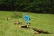Bei vielen spaßigen Spiel-Stationen konnten die jungen Spechtfest-Besucher ihr Können unter Beweis stellen.  (Foto: Thies Hinrichsen/Nationalpark Bayerischer Wald)