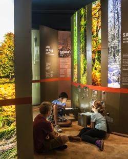 Nicht nur Kinder finden auf einer Entdeckertour durch die Ausstellung des Waldgeschichtlichen Museums viele spannende Geschichten. (Foto: Jo Fröhlich)