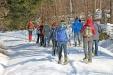 Am Sonntag, 21. Januar, führt Waldführerin Birgit Esker mit Schneeschuhen zum Jährlingsschachten. (Foto: Gregor Wolf / Nationalpark Bayerischer Wald)
