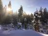 Bei der ökumenischen Winterwanderung am 3. Februar bietet sich die Gelegenheit, Natur in Verbindung mit meditativen Elementen zu erleben. (Foto: Sandra Schrönghammer/Nationalpark Bayerischer Wald)