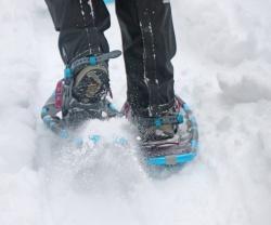 Bei der Wanderung am 4. Februar auf Schneeschuhen zum Lindberger Schachten gibt es neben spannenden Einblicken in den Wald. (Foto: Gregor Wolf/Nationalpark Bayerischer Wald)