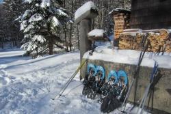 Nach der Tour durch den Winterwald werden die Schneeschuhe für eine Rast in der alten Racheldiensthütte abgeschnallt. (Foto: Nationalpark Bayerischer Wald)