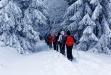 Am 4. März führt Waldführer Steffen Krieger auf Schneeschuhen durch den Winterwald. (Foto: Steffen Krieger  –  Freigabe nur in Verbindung mit dem Veranstaltungshinweis)