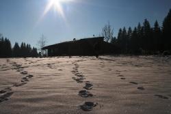 Winter im Wildniscamp Foto: J. Haslinger