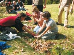 Unter Anleitung einer Commerzbank-Praktikantin ertasten Jugendliche unterschiedliche Pflanzen im Gras.Foto: Manuel Neubauer