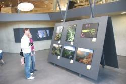 Fotoausstellung im Haus zur Wildnis.doc