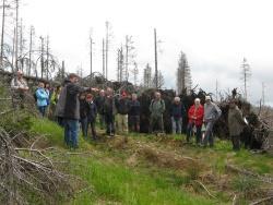 Nationalparkleiter Sinner erklärt den Nationalpark-Partnern in den Hochlagen des Lackenbergs die notwendige Borkenkäferbekämpfung Foto: Britta Baums