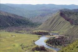 Das Wildnisgebiet Khonin Nuga im Norden der Mongolei: Wald, Trockensteppe, wilde Flußschleifen und Auwaldinseln.(Foto: Dr. M. Mühlenberg)