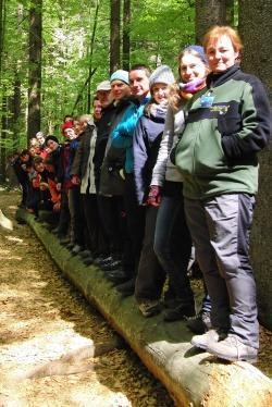 Schön aufgereiht: die neuen Waldführer auf totem Holz Foto: Veronika Müller
