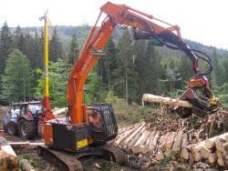Mit mobilen Seilkrananlagen werden die Bäume naturschonend an die Straße oder Rückegasse transportiert und dort von Prozessoren für den Verkauf aufgearbeitet. Foto: Franz Baierl