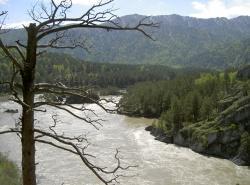 Einzigartige, völlig unberührte Naturlandschaften, wie hier beispielhaft im Altaigebirge, prägen die zahlreichen Wildnisgebiete und Nationalparke mit für Mitteleuropa riesigen Ausmaßen in den Weiten Russlands
