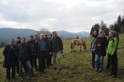 Tagungsteilnehmer bei den Przewalskipferden im Tier-Freigelände