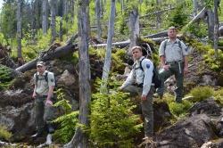 Ranger in der Waldwildnis des Nationalparks Bayerischer Wald