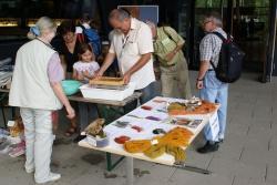 Pilzexperte Heinrich Holzer übte sich mit Begeisterung beim Papierschöpfen