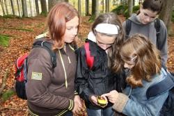 """Neugierig und mit großer Spannung blicken die Schülerinnen der Grundschule Haslach/Oberösterreich auf das GPS-Gerät um zu erfahren, welche neuen Daten es auf der Suche nach dem """"Schatz"""" anzeigt"""