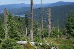 Ein beeindruckender Ausblick zur Talsperre wird den Mitwandernden bei der Tour durch einen der landschaftlich schönsten Bereiche des Nationalparks geboten