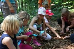 Kinder beim Bau einer Bodenleiter