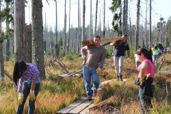 Die Jugendlichen aus dem Bayerischen Wald und aus Venezuela halfen im Rahmen eines Jugendaustausches tatkräftig mit, den morschen Steg durch das Zwieselter Filz im Nationalpark Bayerischer Wald zu erneuern