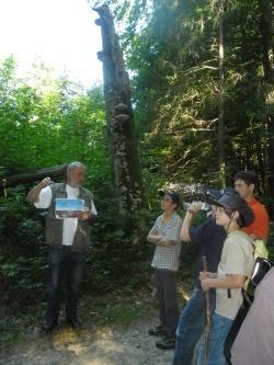 """Zur Einführung in die Welt der Pilze zeigte Pilzexperte Heinrich Holzer anhand einer Schautafel die """"Zusammenarbeit"""" zwischen Pilzgeflecht und Pflanzenwurzeln im Boden"""
