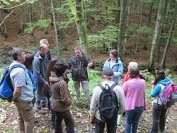 Nationalpark-Mitarbeiter Reinhold Weinberger (Mitte) erläutert den Nationalpark-Partnern und der Kooperationsbetreuerin Katrin Wachter (4. v.r.) die Geschichte des Wildnisweges bei Buchenau