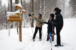 Wer tief verschneite Landschaften liebt, sollte sich die geführten Schneeschuhtouren im Nationalpark nicht entgehen lassen.