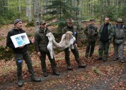 """Fachexkursionen vertieften die auf der Tagung präsentierten Forschungsthemen im Nationalpark, unter anderem zum Fokus """"Luchsschutz"""""""