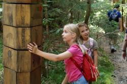 Auf Entdeckungsreise im Waldspielgelände (Foto: NPV Bayerischer Wald)