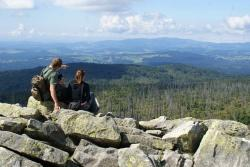 Rückt die Vision eines gemeinsamen Urwalds von morgen zwischen Šumava und Bayerischen Wald mit seltenen Tierarten wie Luchs, Auerhuhn und Elch bei gleichzeitigem attraktiven Angebot von nachhaltigem Tourismus wieder näher? Dies ist eine der Kernfragen der Transboundary Parks-Fachtagung 2015.  (Foto: NPV Bayerischer Wald)