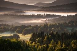 Morgennebel über dem Nationalpark Šumava – Mit seinen stimmungsvollen Bildern lädt Berndt Fischer zu einem faszinierenden Streifzug durch Europas größtes Waldgebiet ein.