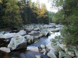 Wild und verwunschen: Die Vydra mit vielen Stromschnellen, Felsblöcken und unregelmäßigen Schwellen im Flussbett (Foto: WaldZeit)