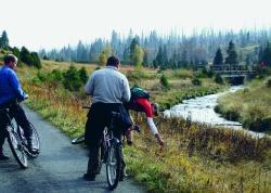 Neues erkunden und Altes wiederentdecken – dazu laden die geführten Radtouren in den Nationalpark Šumava ein. (Foto: NPV Bayerischer Wald)