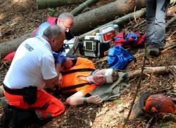 Waldarbeit im Nationalpark birgt trotz gebotener Vorsicht ein ernstzunehmendes Unfallrisiko. Rettungsübungen tragen hier zur Sicherheit bei.