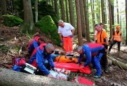 Arbeiten bei der Rettung Hand in Hand: die Integrierten Leitstellen, die Bergwacht, das BRK und der Nationalpark