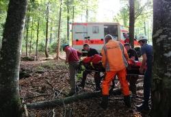 Dank regelmäßiger Rettungsübungen reicht die reibungslose Rettungskette auch bis in abgelegene Waldregionen des Nationalparks.